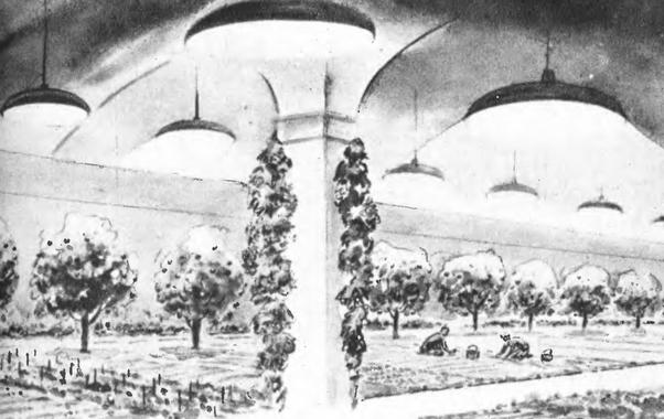 Рис. 7. Проект тепличного садово-огородного хозяйства в бывших шахтных выработках Кольского, Воркутинского и других приполярных месторождений угля и других полезных ископаемых. 1950 г.