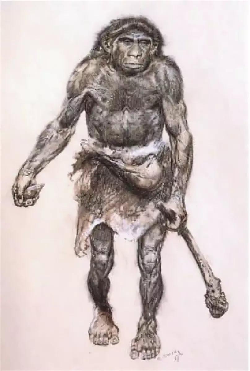 неандерталец тело